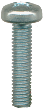 License Plate Screw 1260020B